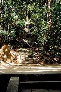 steps of the meditation path in Ritigala