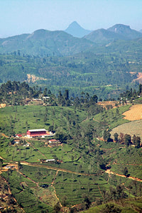 Siri Pada seen from Sri Lanka's highlands