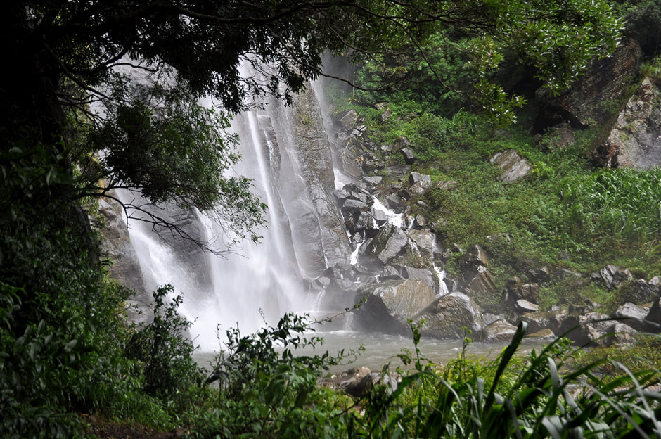 base of Bambarakanda waterfalls in the jungle