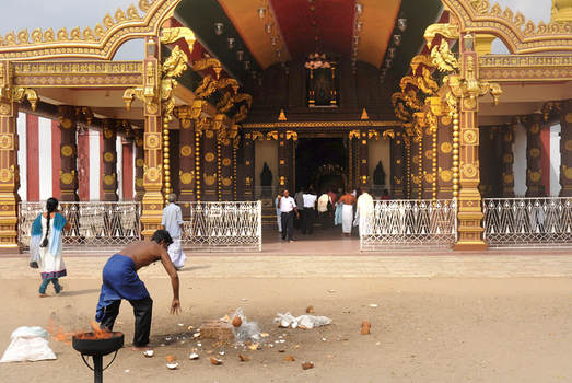 Coconut smashing in front of a Murugan shrine in Nallur