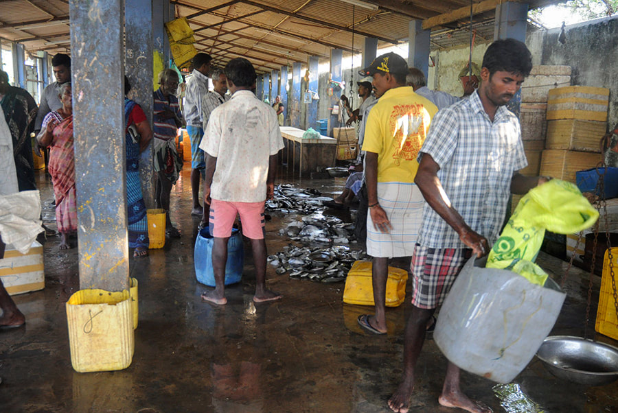 Market complex in Jaffna city