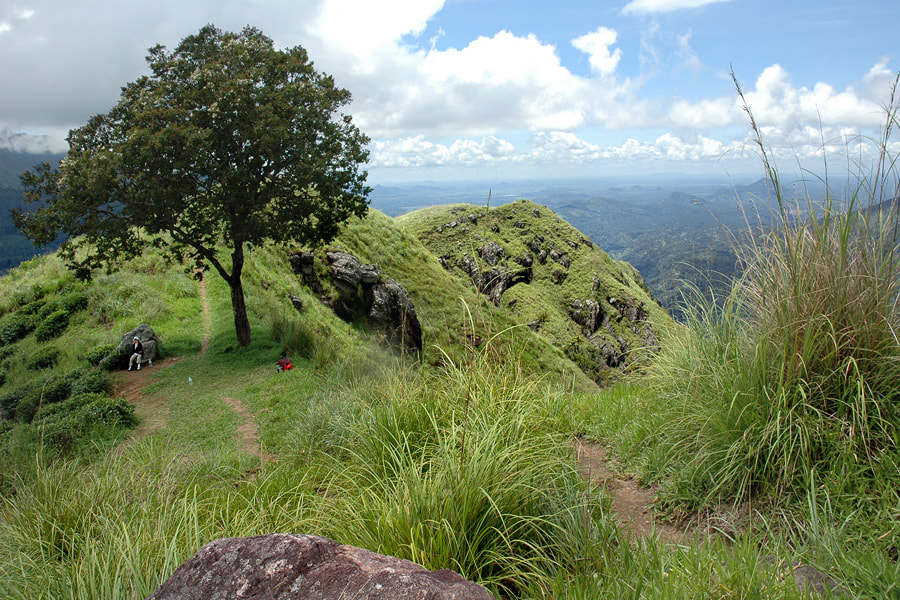 Summit of Little Adam's Peak near Ella