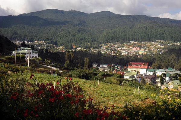 Piduruthalagala mountain behind the city of Nuwara Eliya