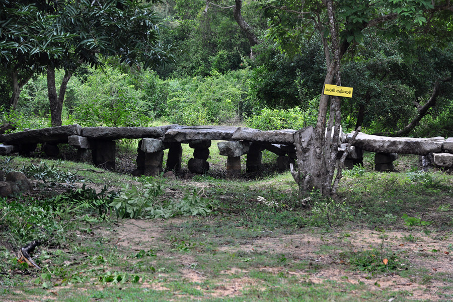 Anuradhapura period stone bridge Gal Palama of Thiriyaiir