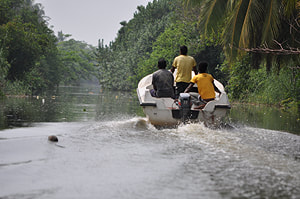 boat safari in Muturajawela wetlands near Negombo