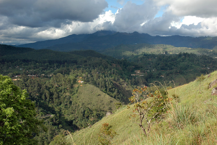 view to Ella and Namunukula mountain range