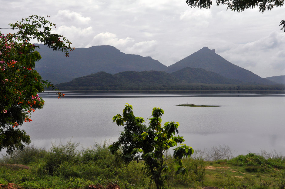 Kandalama lake near Dambulla
